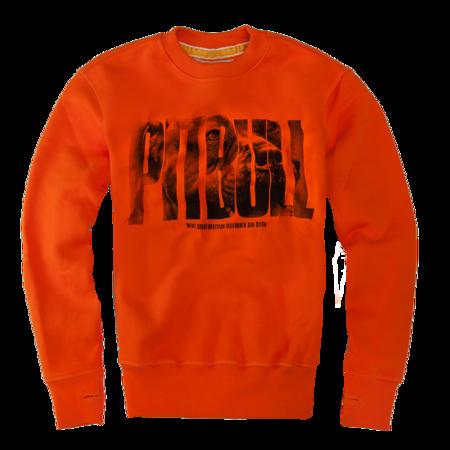 Pit Bull Bluza Crewneck Orange Dog